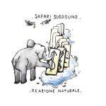 safarisurround